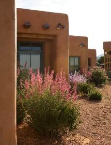 Private Residences around Santa Fe, New Mexico. Landscape design by Ecoscapes