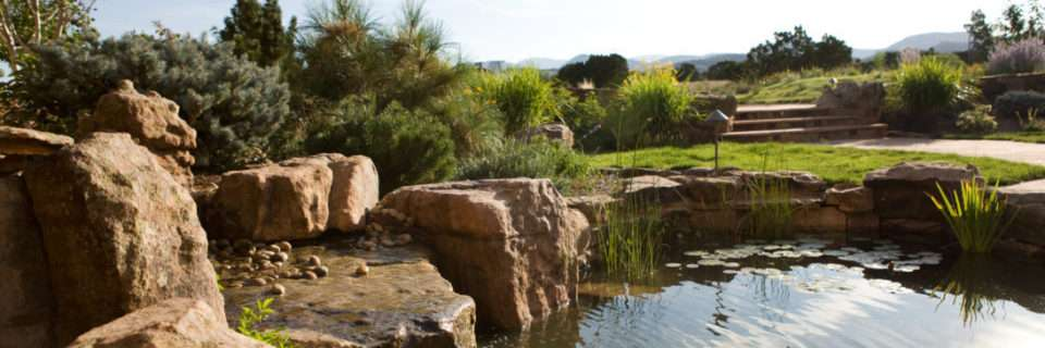 We can help you design, build, and maintain your dream landscape